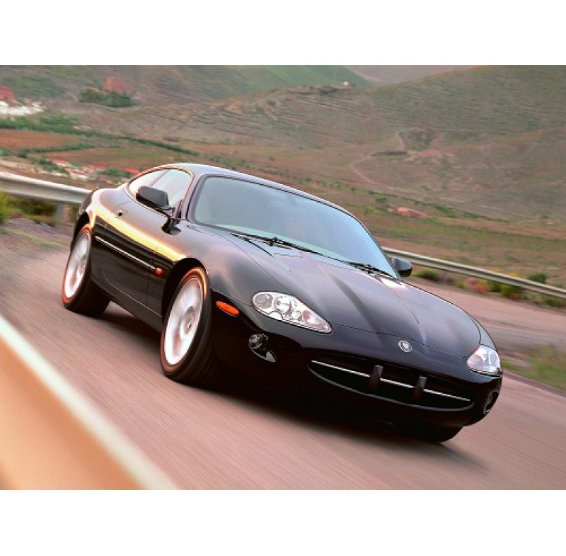 Tendine parasole oscuramento vetri tende auto PRIVACY Jaguar XK da 3-96 a 2-06