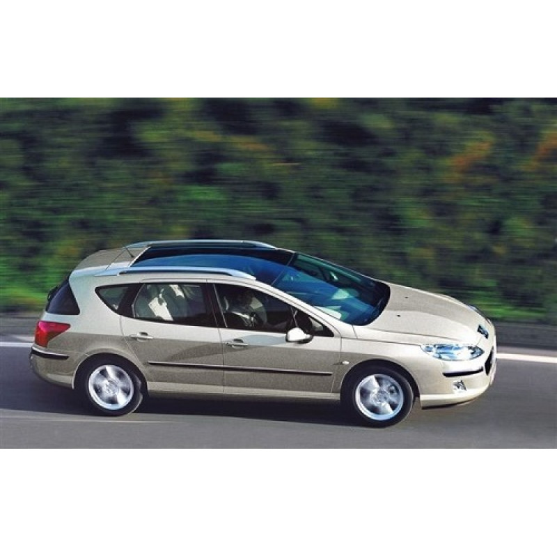Tendine parasole oscuramento vetri tende auto Peugeot 407 SW da 9-04 a 12-11